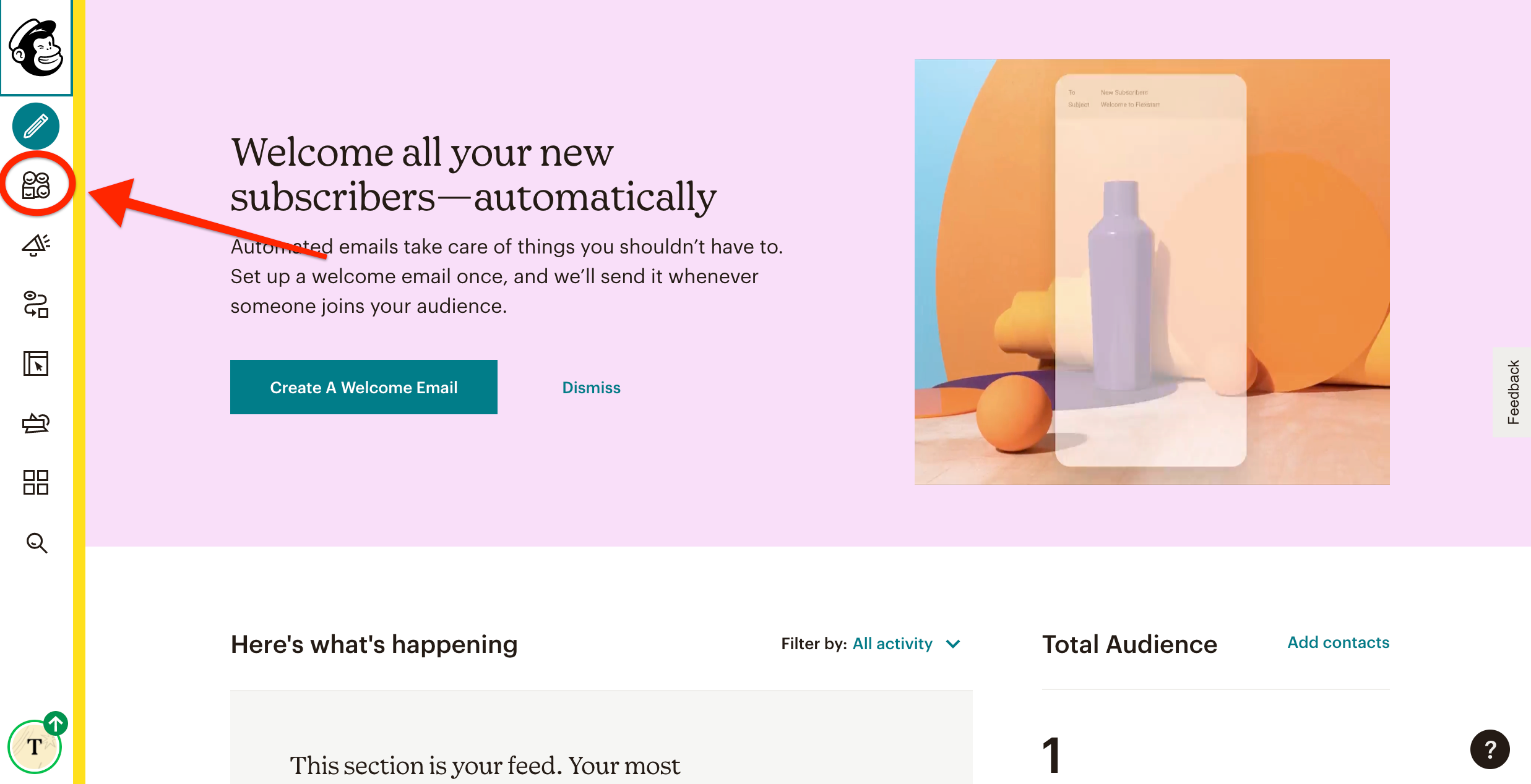 mailchimp-audience.png