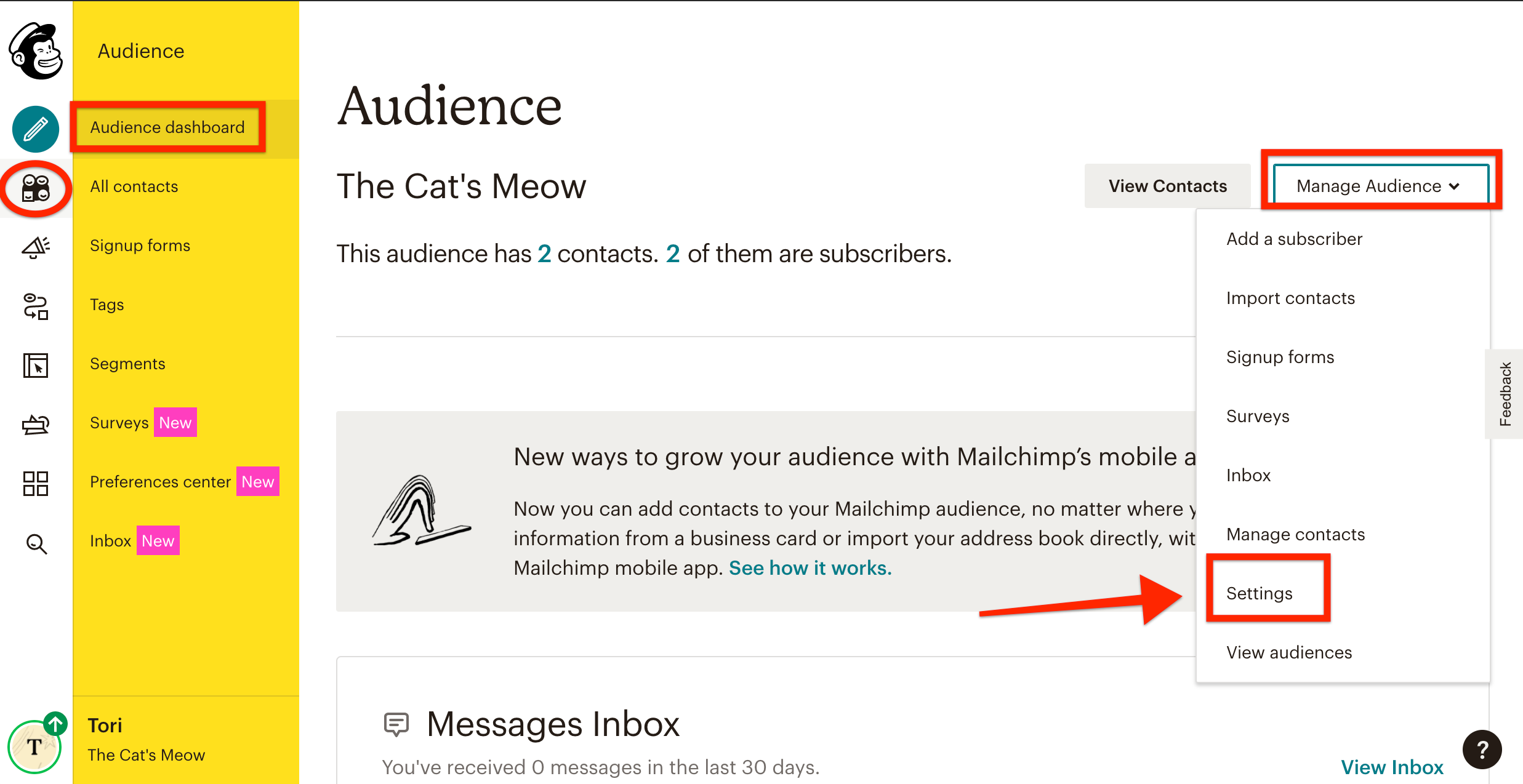 mailchimp-audiencesettings.png